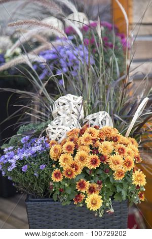 Fall Foilage In Basket