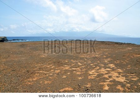 Dry, Barren Red Dirt Plateau On The Islet Of Djeu