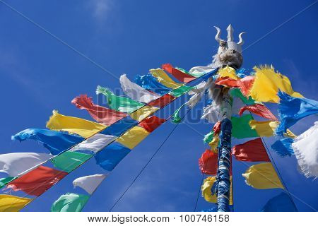 Prayer flags on prairie