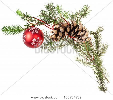 Twig Spruce Tree With Cone And Red Ball On White