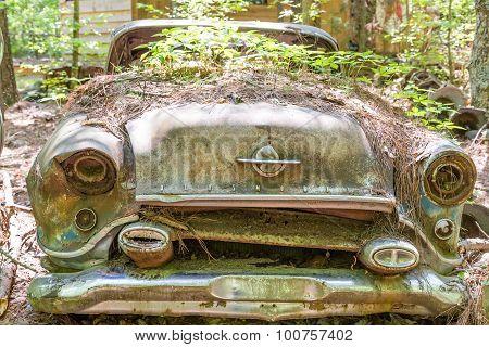 Weeds Growing On Old Oldsmobile