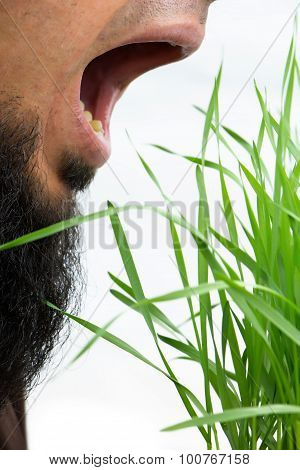 Man With Open Mouth About To Eat Wheatgrass, Isolated On White.