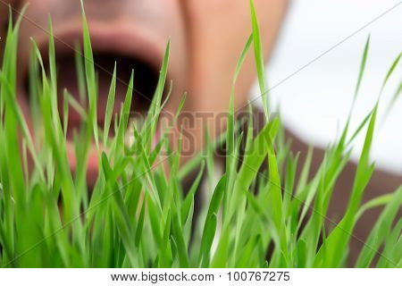 Man With Open Mouth About To Eat Wheatgrass, Focus On Grass