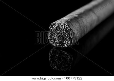 Cigar in black and white