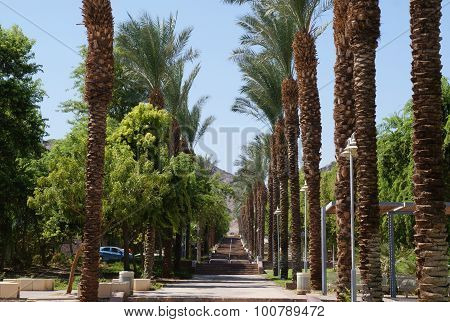 Alley in Eilat, Israel