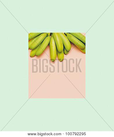 Fashion Photo Bananas On Pink Background. Minimal Geometric Style
