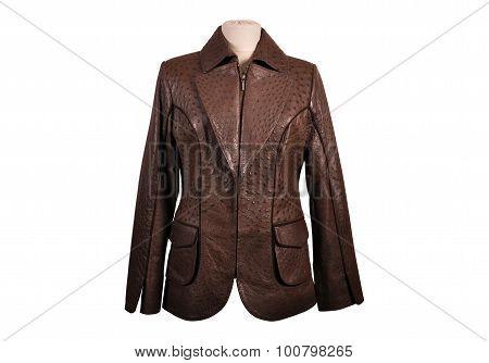 Isolated leather jackets