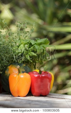 Peppers and herbs