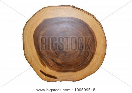 Tree annual ring circle wood isolate on white background