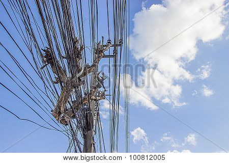 Timber On The Power Cable