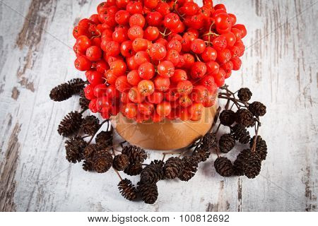Bunch Of Red Autumn Rowan And Alder Cone On Rustic Wooden Background