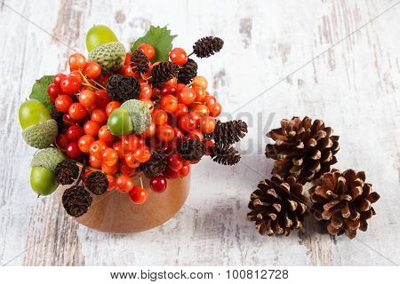 Red Viburnum With Alder Cone, Acorns And Pine Cones On Rustic Wooden Background