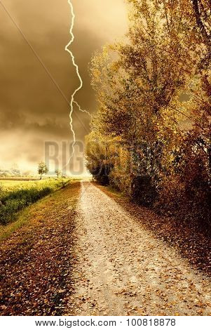 Autumn Storm In The Park