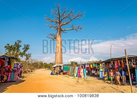 Market At The Road To Baobab Avenue