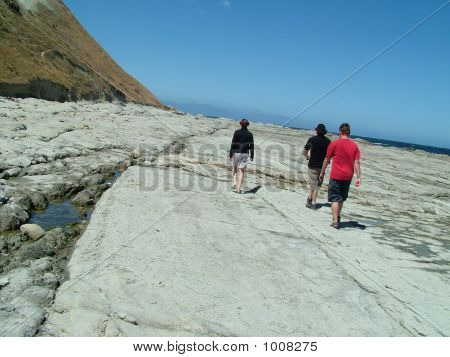 Coastal Walk