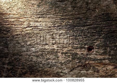 Harsh Lighten Weathered Wood Plank