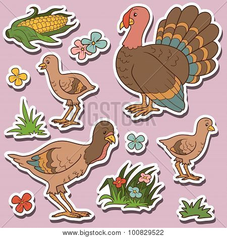 Farm Animals Set, Vector Stickers With Turkey Family And Farm Items