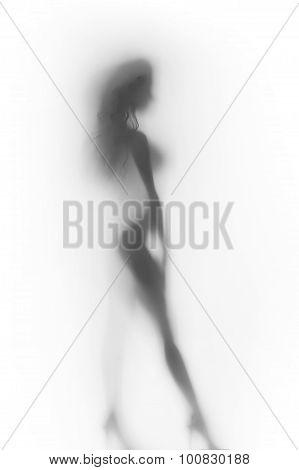 Sexy woman body silhouette