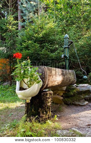 Rustic Rural Water Pump With Flowers In Bidet