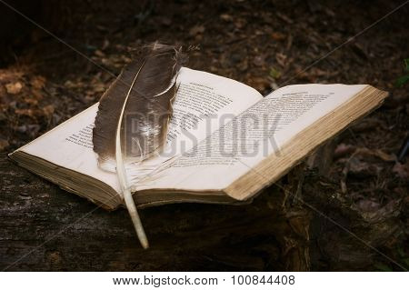 The Ancient Book With Feather