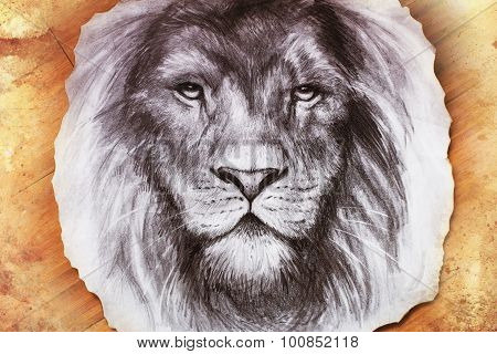 Drawing of a lion head with a majestically peaceful expression on wood abstract background. eye cont