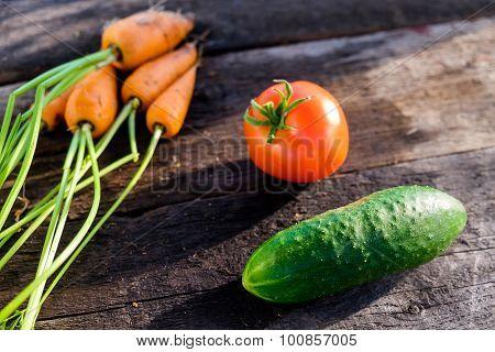 Cucumber Tomato Carrot
