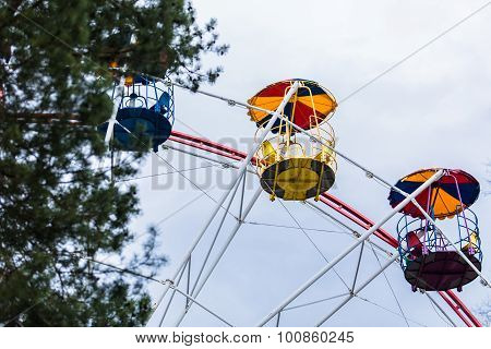 details of ferris wheel with tree in front