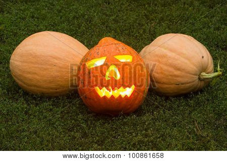 Autumn Helloween Pumpkin