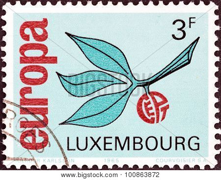 LUXEMBOURG - CIRCA 1965: A stamp printed in Luxembourg from the