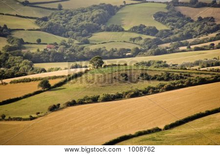 Devon Countryside