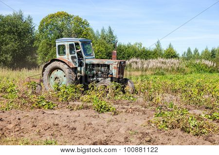 Old Tractor At The Potato Field In Sunny Day