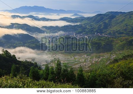 Rice fields on terraced in sunrise,