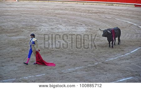 Spanish Bullfighter And A Bull In La Monumental Arena