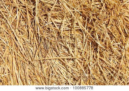 Haystack Background