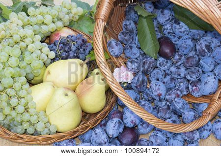 Fruit Baskets. Fresh Plums, Grapes And Pears In Wooden Baskets