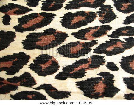 Leopard spot pattern