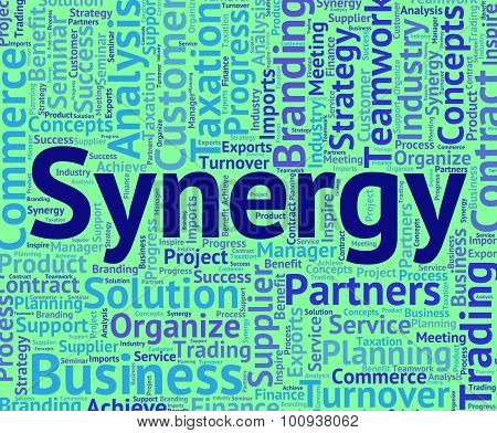 Synergy Word Means Team Work And Partner