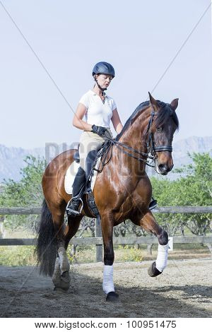 Girl On A Dressage Session