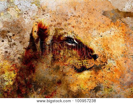 Little lion cub head. animal painting on vintage paper, abstract color background with spots and cra