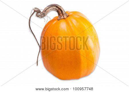 Pumpkin On A Light Background