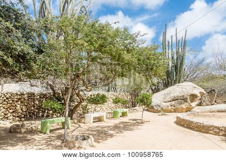 Benches In Desert Rock Garden
