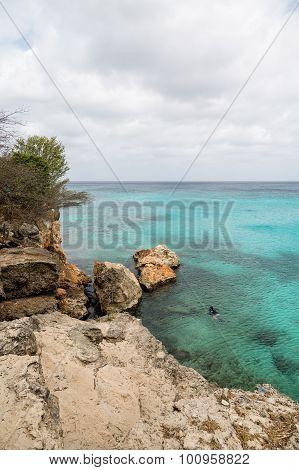 Snorkeler Off Rocky Coast Of Curacao