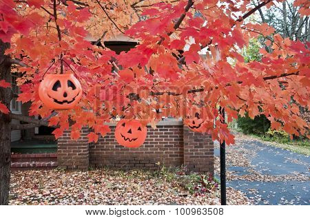 three jack-o-lanterns in autumn tree