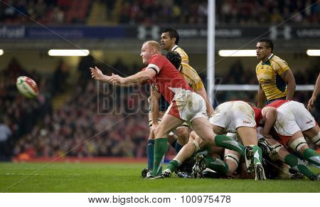 CARDIFF, WALES. 28 NOVEMBER 2009. Martyn Williams of Wales  while playing in the Invesco Perpetual International Rugby Union match between Wales and Australia at the Millennium Stadium.