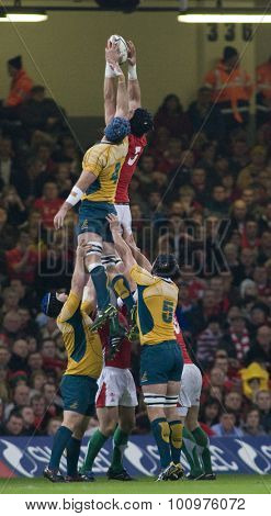 CARDIFF, WALES. 28 NOVEMBER 2009. Luke Charteris of Wales wins a lineout  while playing in the  International Rugby Union match between Wales and Australia at the Millennium Stadium.