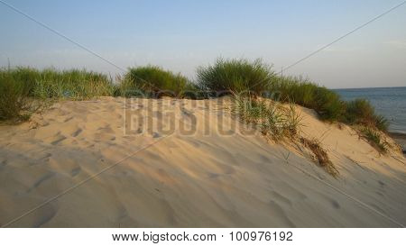 Yellow Sand Dunes And Sea Coastline