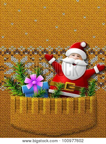 Santa Claus, Gift, Pine Twigs In Knitted Pocket