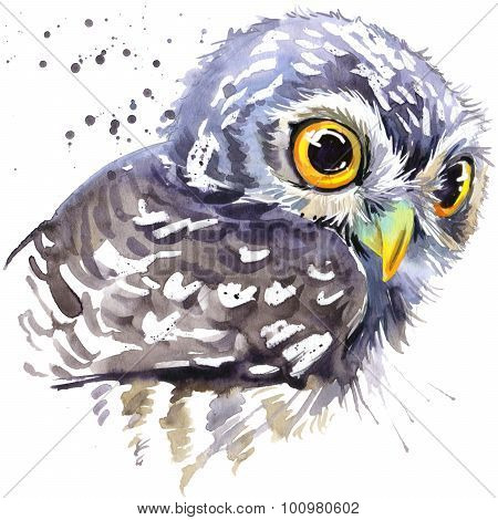 owl T-shirt graphics, snowy owl illustration with splash watercolor textured background. illustratio