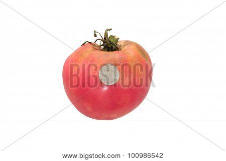 Big tomato on a white background in comparison with the coin