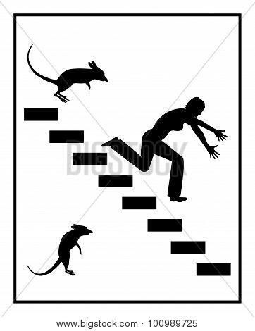 Fear Of Mice